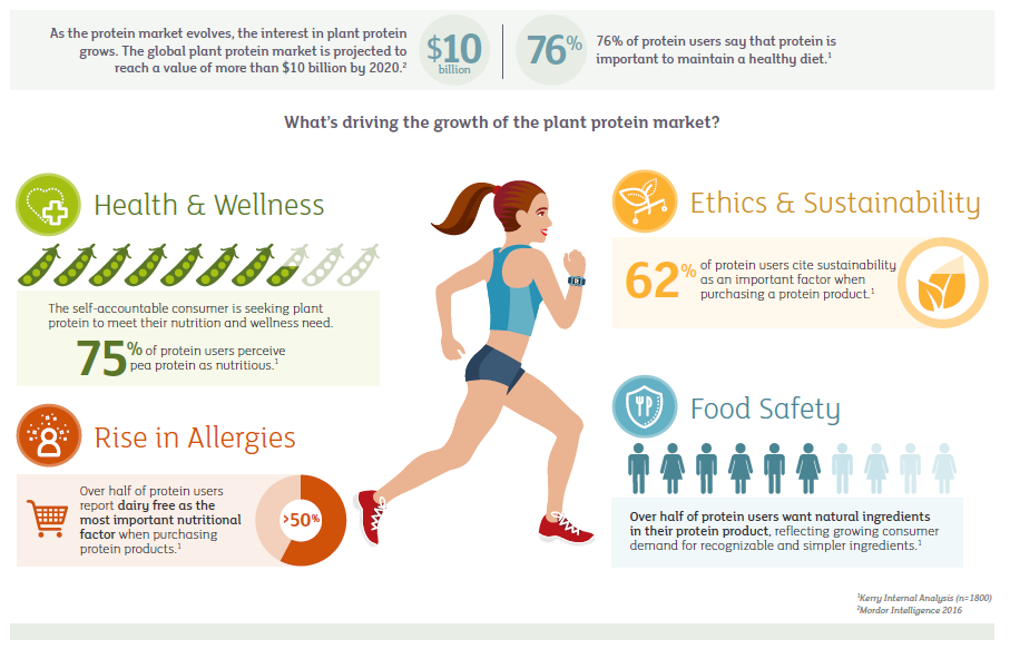 Infographic showing reasons plant protein appeals to consumers