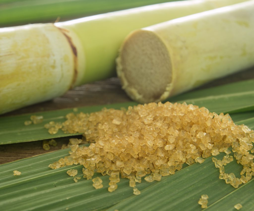 Sugar cane with refined sugar image