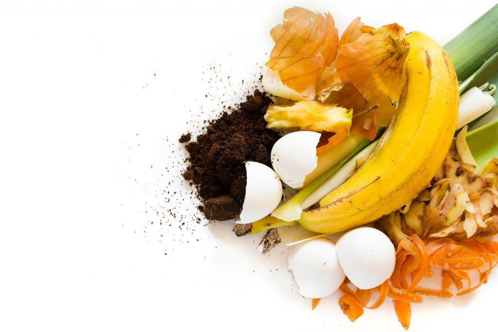 Image of banana peel, coffee grounds, fruit scraps