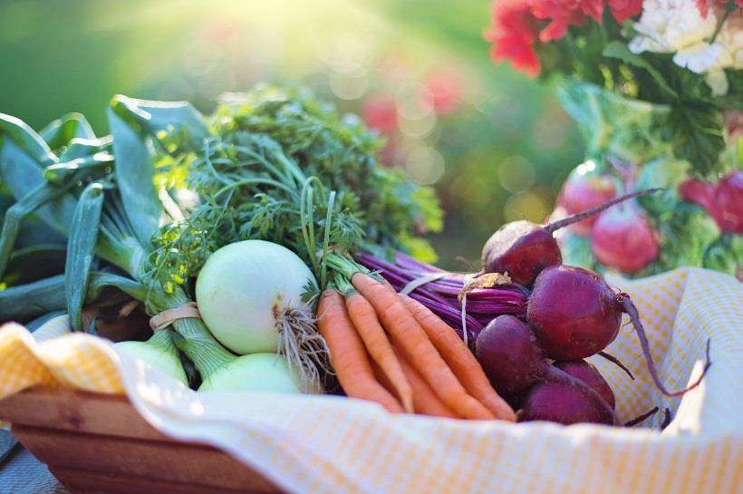 Basket of colorful vegetables