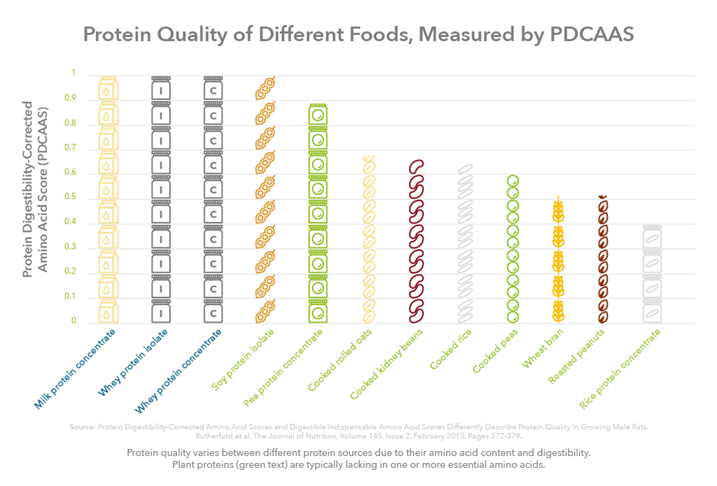 Graph showing PDCAAS scores of plant and animal proteins to demonstrate differences in protein quality