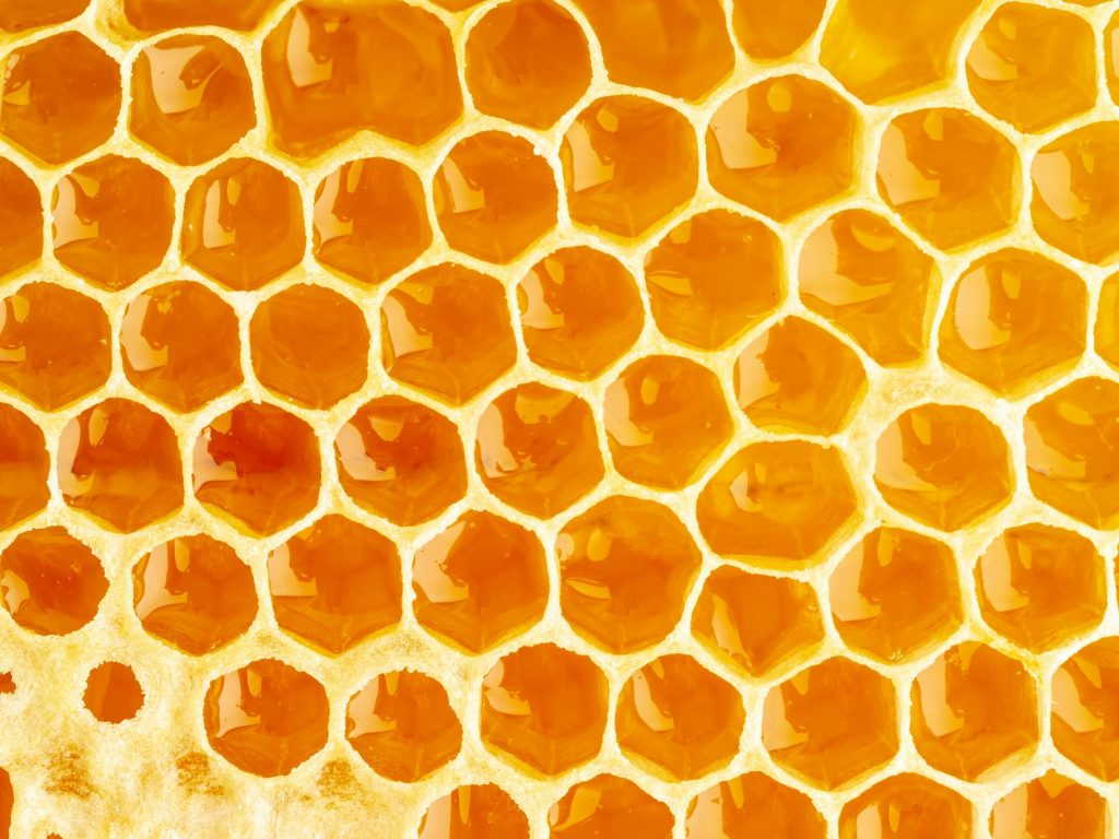 Close up of honeycomb