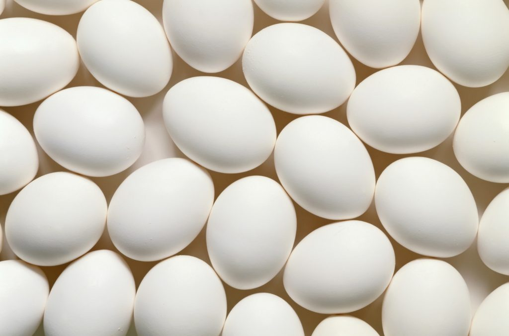 Close up of white chicken eggs