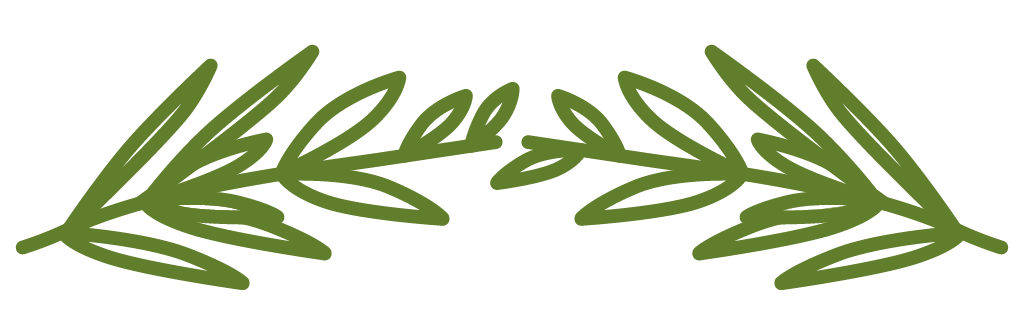 Illustration of herbs for mood trend