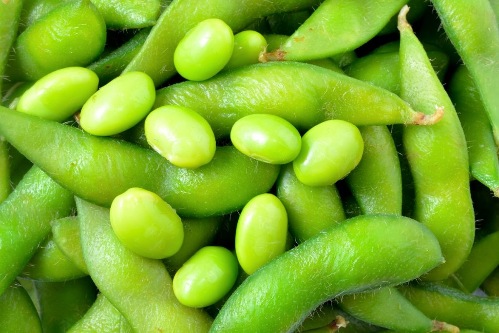 Close up of soy beans and bean pods