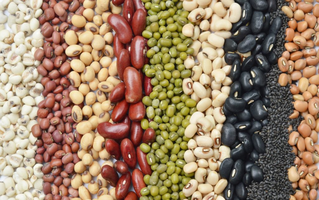 Formulating plant-based foods with proper nutrition can be challenging